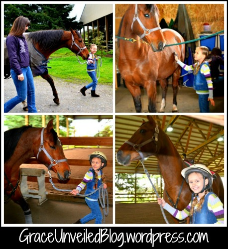 horse lessons 8