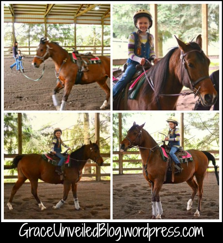 Horse lessons 9